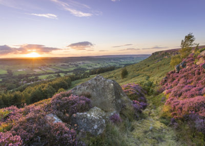 danby dale by laurie smithies
